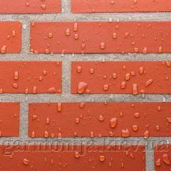 Очищення і захист фасаду